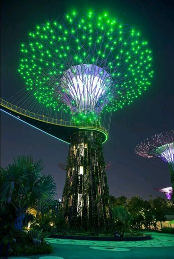 Garden Of Lights Green Bay Tree Of Life Singapore  Relocation Guide To Singapore  Pinterest
