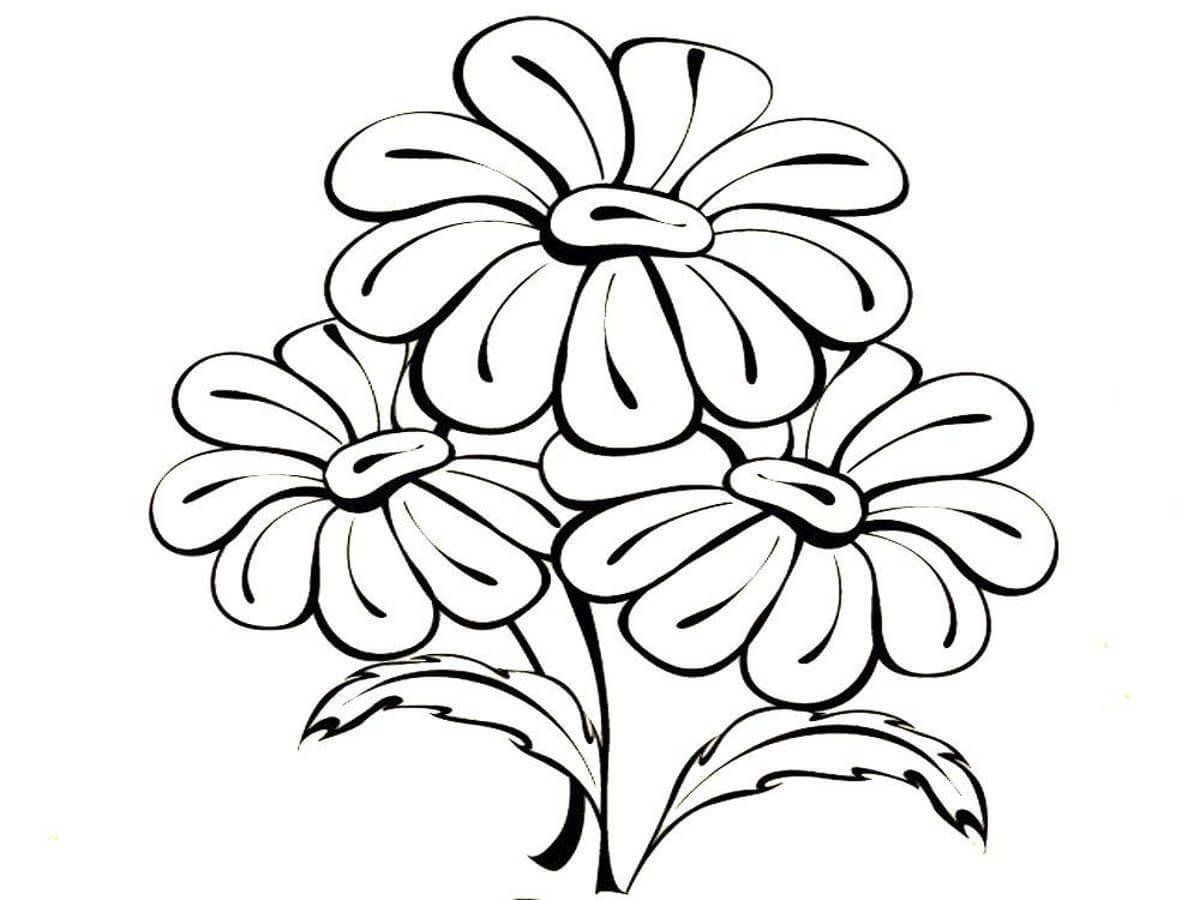 Dibujos Para Colorear Flores Imagenes Para La Creatividad De Los Ninos Paginas Para Colorear De Flores Dibujos De Flores Dibujos Para Colorear
