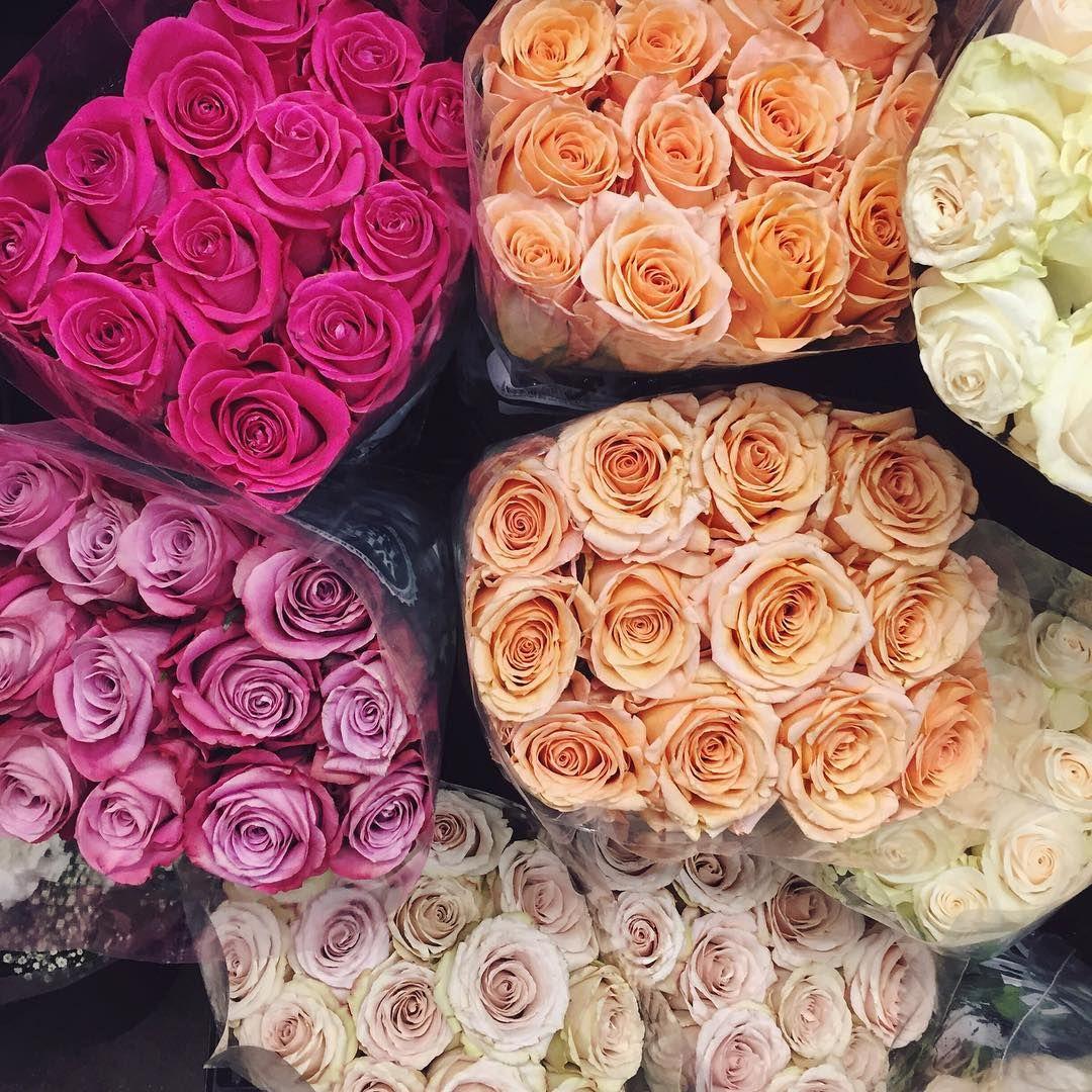 Beautiful Flowers Tumblr Lovely Things Pinterest Lovely