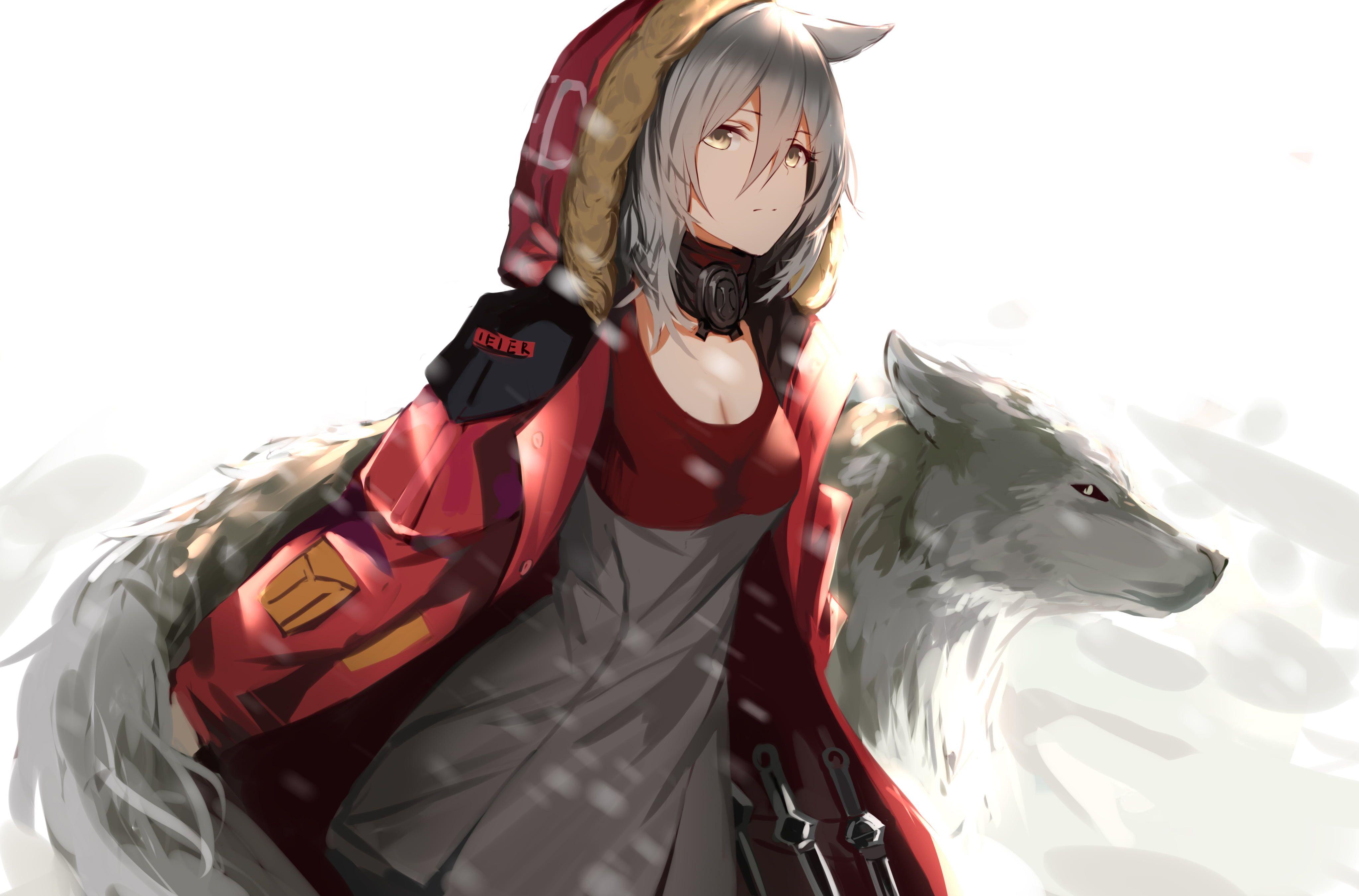 Anime Girls Wolf Digital Art Yasuri Anime Artwork Arknights 4k Wallpaper Hdwallpaper Desktop Anime Wolf Girl Anime Wolf Anime Art Girl