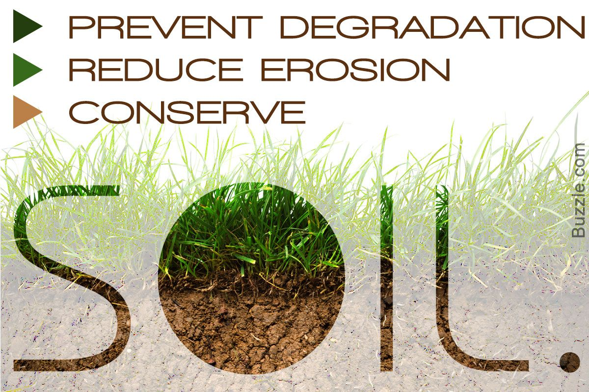 10 Ways To Conserve Soil You Won T Believe Actually Work