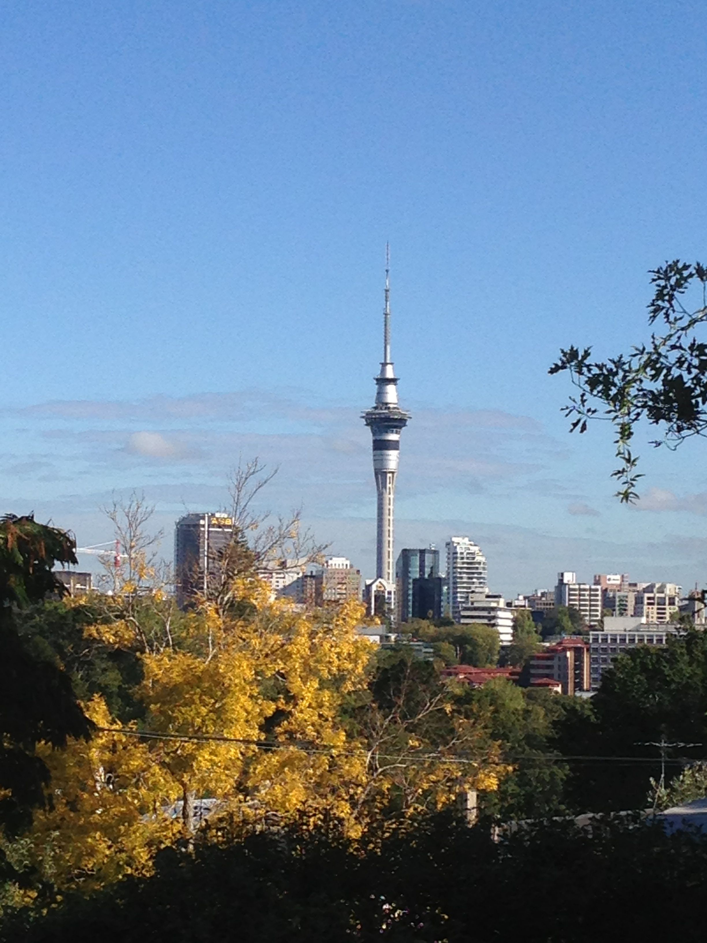 Stunning view from the courtyard behind our office. #auckland #parnell #skytower