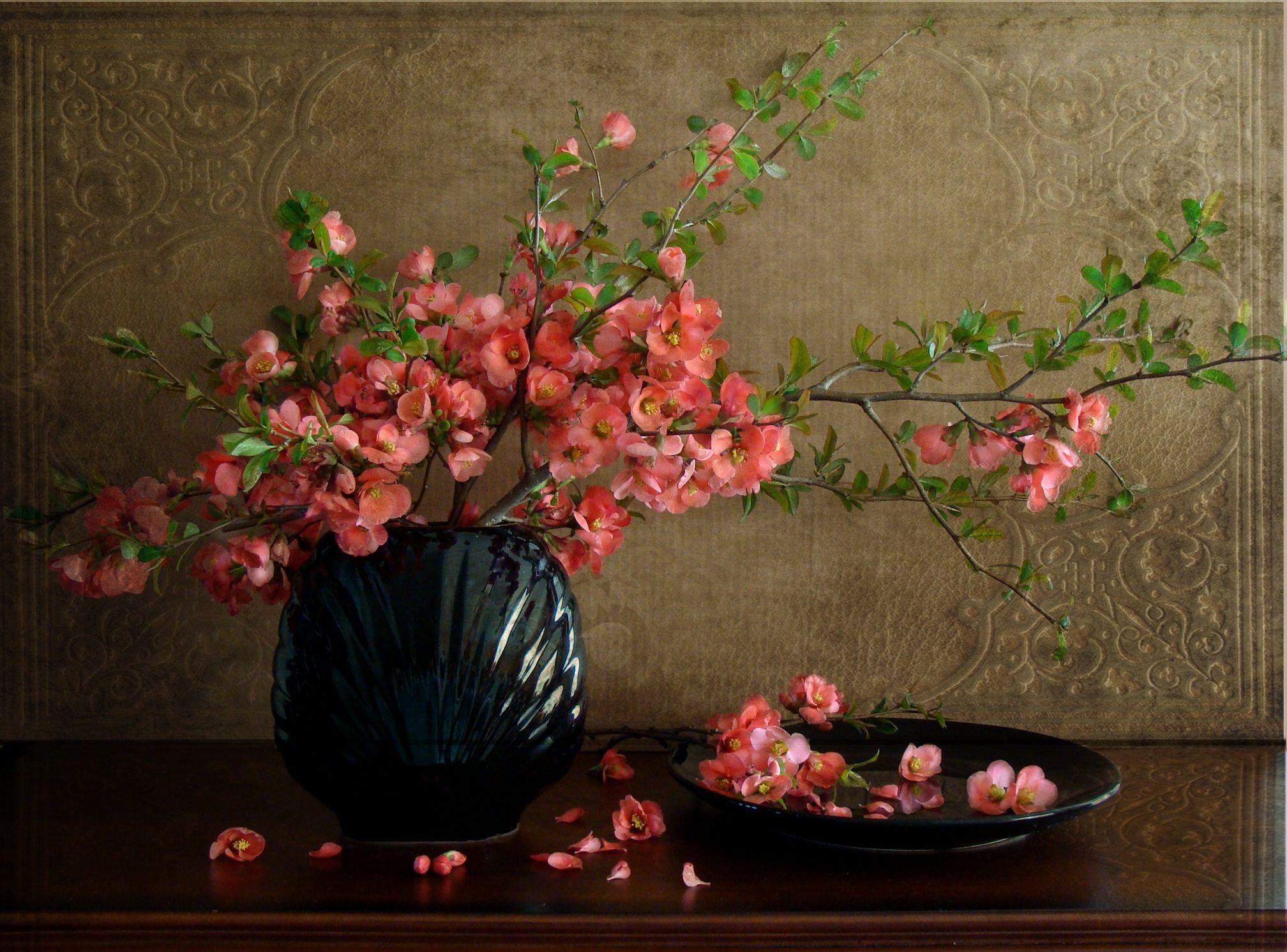 Hd Still Life Wallpaper Download Free 84844 Still Life Flowers Still Life Flower Art Fantastic flower vase wallpaper images