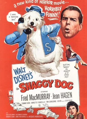 Watch The Shaggy Dog Full-Movie Streaming