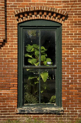 Johnson Windows Doors Home Facebook