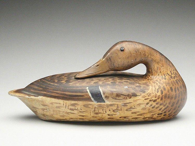 Well Formed Preening Mallard Hen Bert Graves Peoria Illinois Bird Carving Deeter Peoria