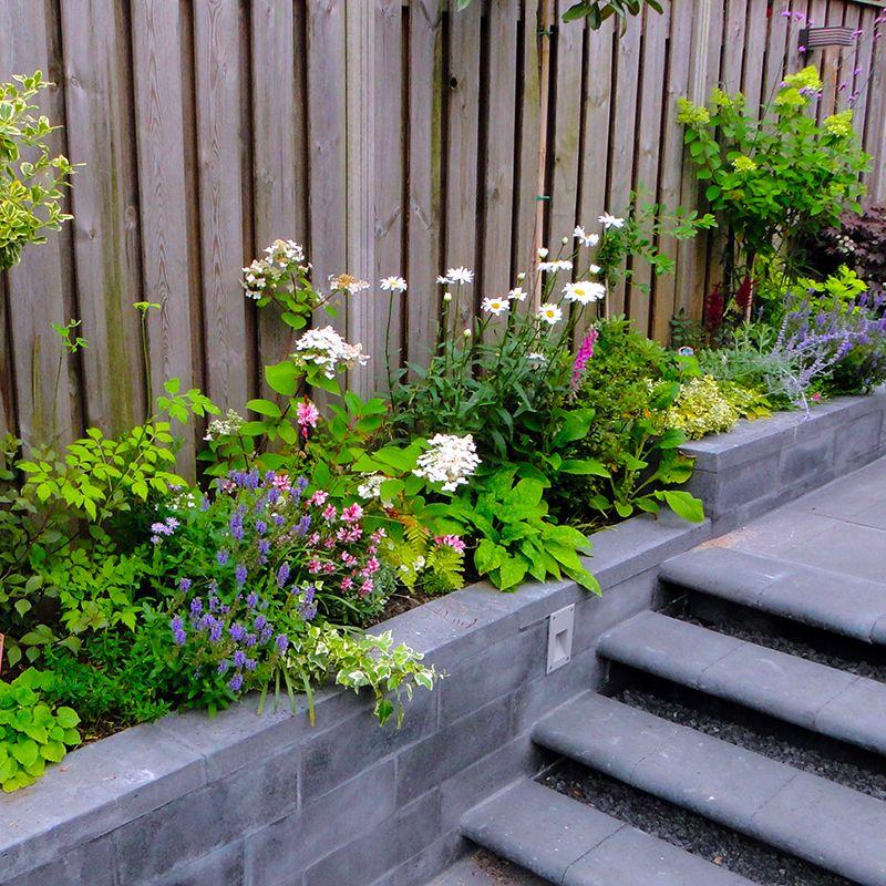 Border aanleggen vaste planten tuinontwerp pinterest for Trap tuin aanleggen