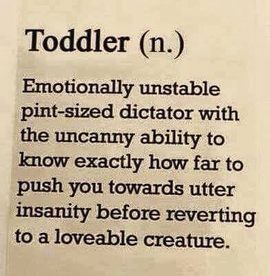 So True Toddler Quotes Mom Humor Funny Quotes