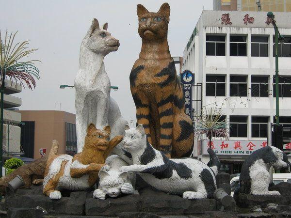 Cat Statue In Kuching Photo Crazy Cats Cat Statue Cat City