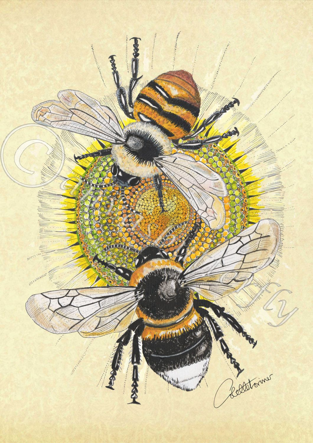 Unique Bee Print - Bee Picture - Bee Artwork - Bee Illustration - A 4 Bee  MW17