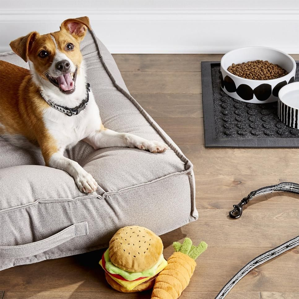 Gifts For Dogs Under 20 Hgtv Dog Toys Best Dog Toys Dog Milk