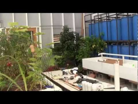 Awesome Preppers Aquaponics Homestead 3 - http://survivinghub.com/awesome-preppers-aquaponics-homestead-3/