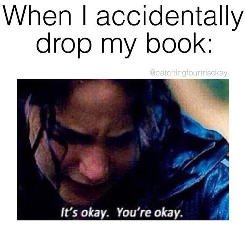I fell down the stairs once and I was holding Looking For Alaska and I wasn't even worried about me I was worried about the book
