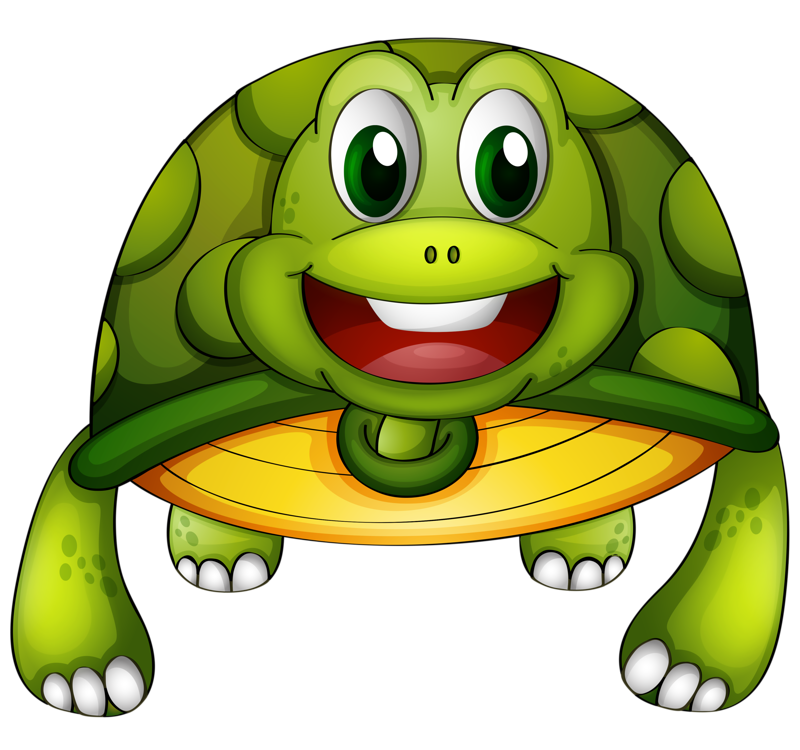Turtle Cartoon Drawing Turtle Png Image And Clipart Green Turtle Clip Art Illustration