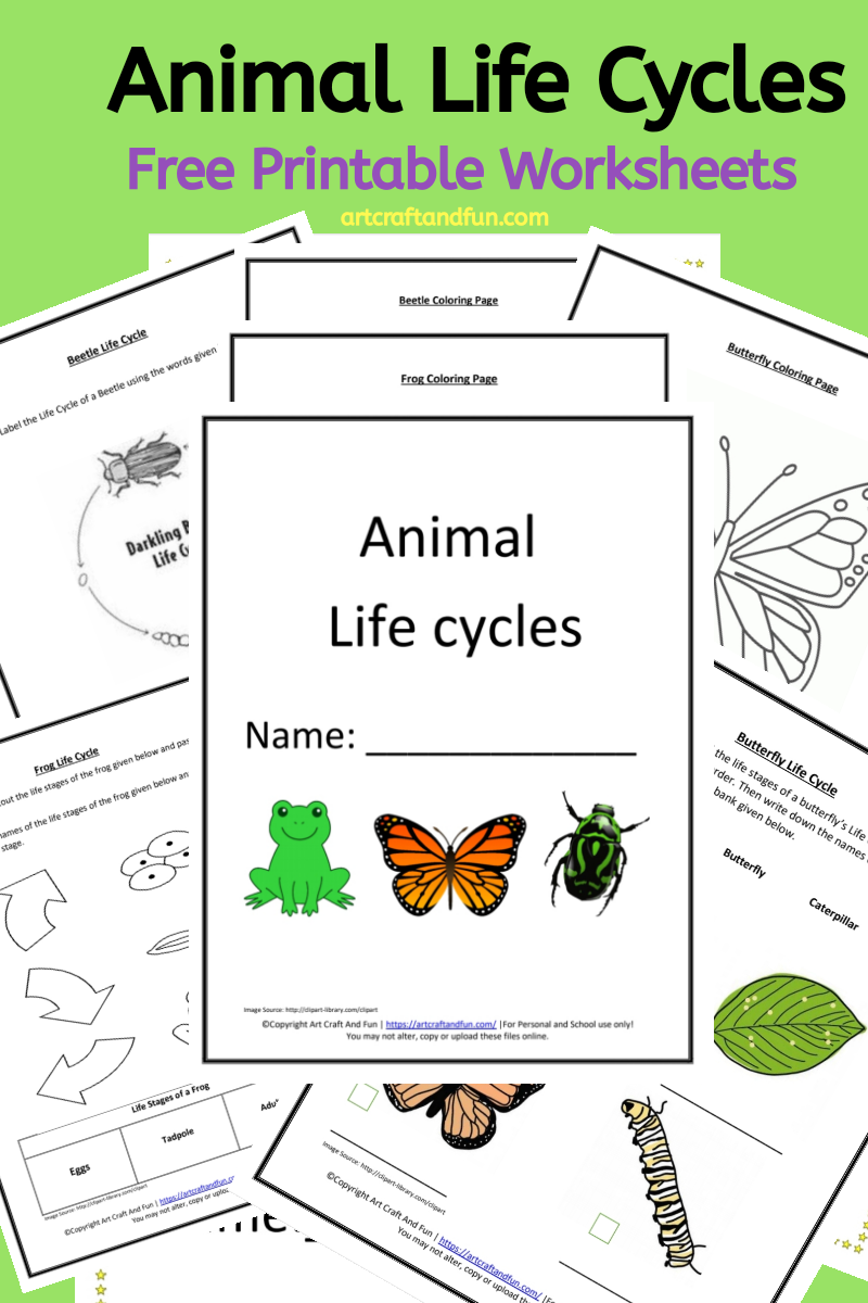 Get Free Printable Animal Life Cycle Worksheets Today Animal Life Cycles Frog Life Cycle Printable Butterfly Life Cycle