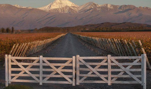 Bodega Terrazas De Los Andes Perdriel Mendoza Bodegas Mendoza Vinos Argentinos