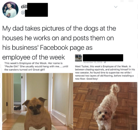 Who's a good employee? wholesomememes Wholesome memes