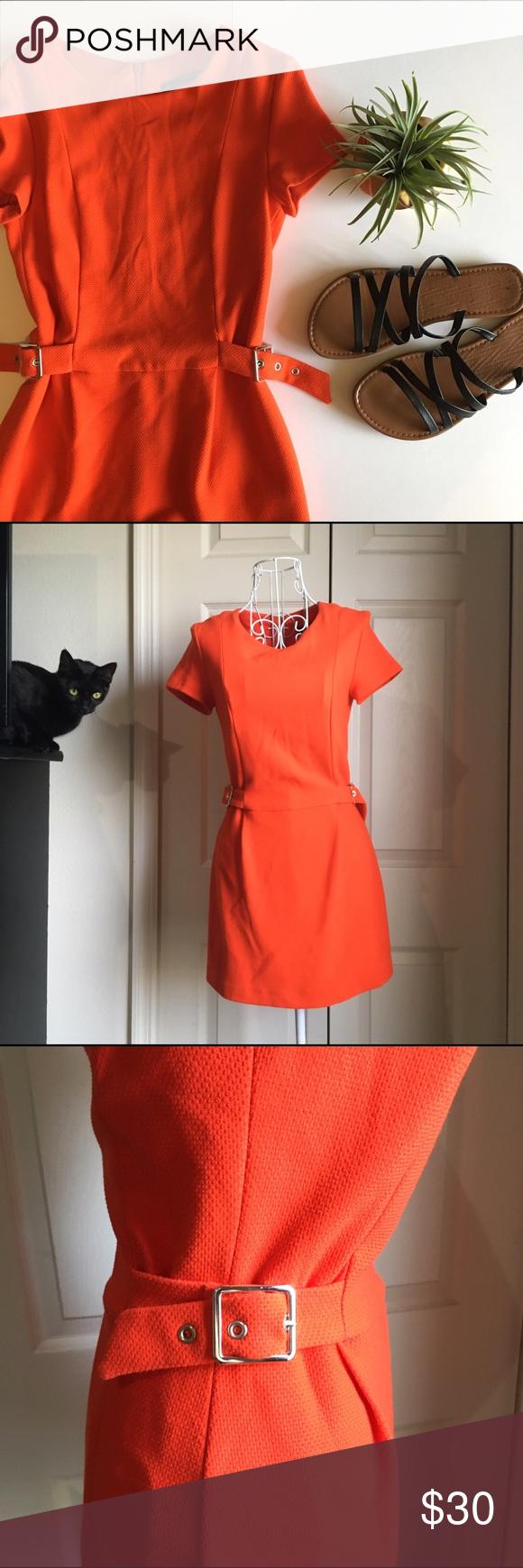 3aafdf2d9d9 ZARA Trafaluc Geranium jumpsuit dress Sophisticated and stylish Zara  Trafaluc Collection jumpsuit dress in burnt orange