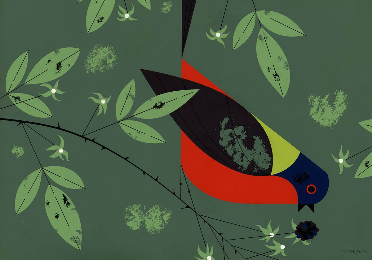 Painted Bunting, 1958 by Charley Harper. Illustration for the \'\'Ford ...