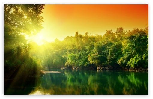 Download Lush Green Forest River At Sunrise HD Wallpaper
