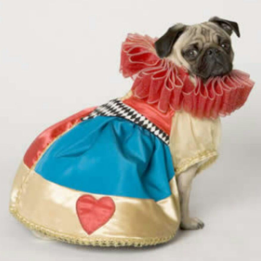 Lola's halloween costume ♥ the queen of hearts from Alice in wonderland :)