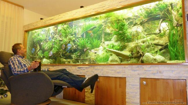 Der User Wolfgang Engel stellt sein Aquarium 5 m³ (Südamerika) mit den Abmessungen 4,25m x 1,35m x 1,92m (5434 Liter) mit 267 Bildern vor.