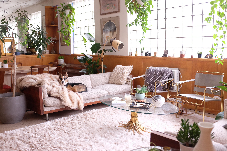 Artist and author kimothy joy s denver home dream home - Glass block windows in living room ...