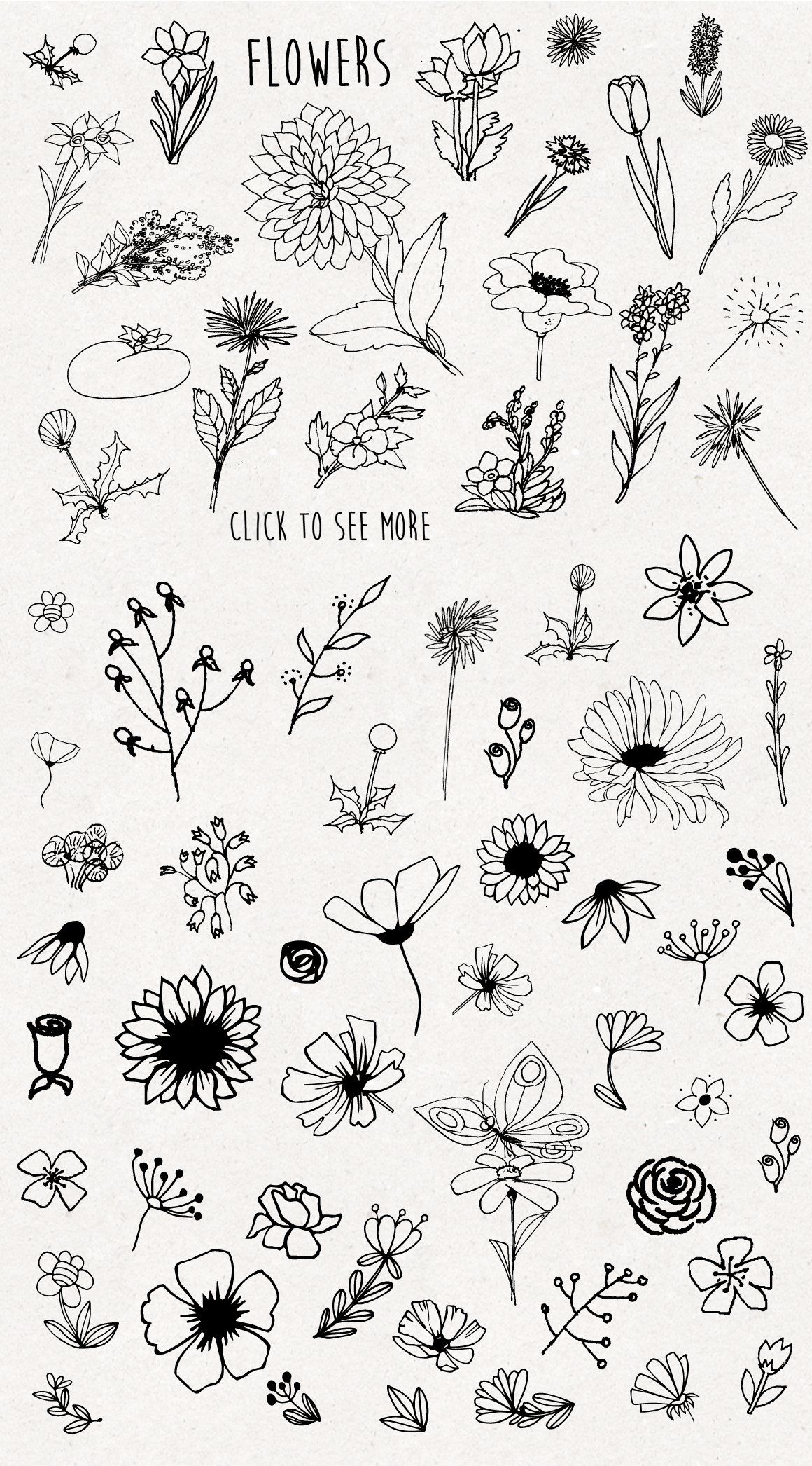 Only Flowers Flower Sketches Floral Drawing Bullet Journal Art