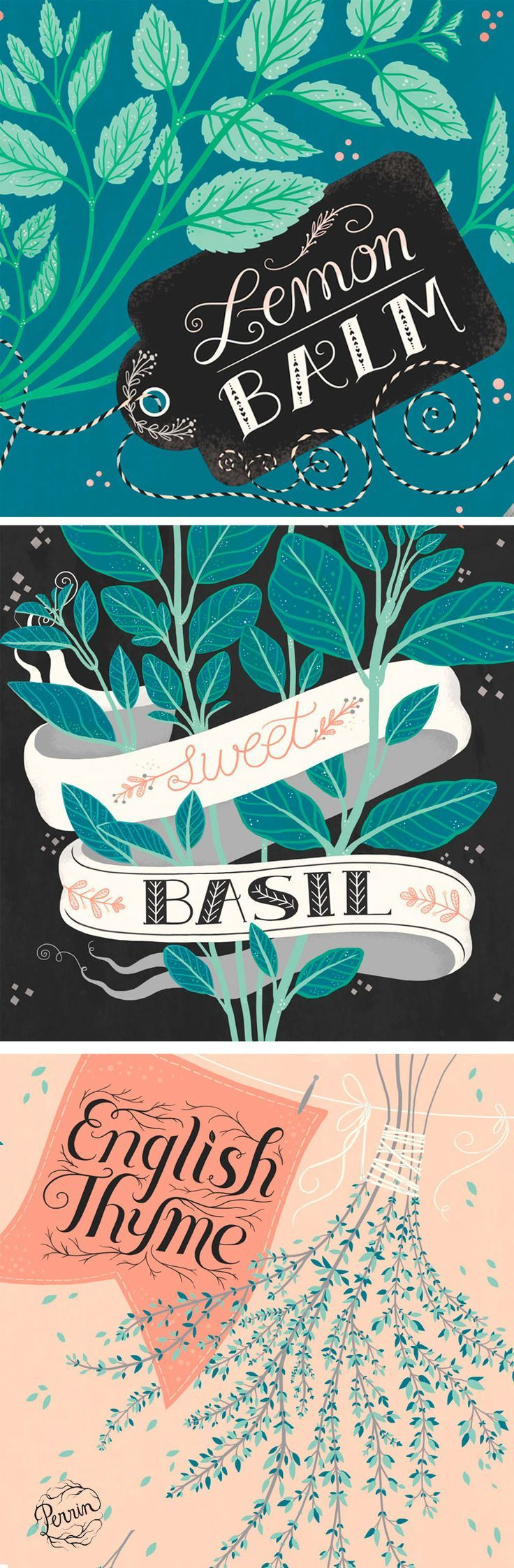 """Three illustrated seed packets for Sweet Basil, Lemon Balm, and English Thyme. The packs are available on the Anthropologie website. <a href=""""http:∕∕www.anthropologie.com∕anthro∕pdp∕detail.jsp?&pageName=Herb+Seed+Variety&catId=HOME-GARDEN&id=35282706#"""" rel=""""nofollow"""" target=""""_blank"""">www.anthropologie...<∕a> ©Perrin 2015 <a href=""""http:∕∕www.madebyperrin.com"""" rel=""""nofollow"""" target=""""_blank"""">www.madebyperrin.com<∕a> Uploaded by user:"""