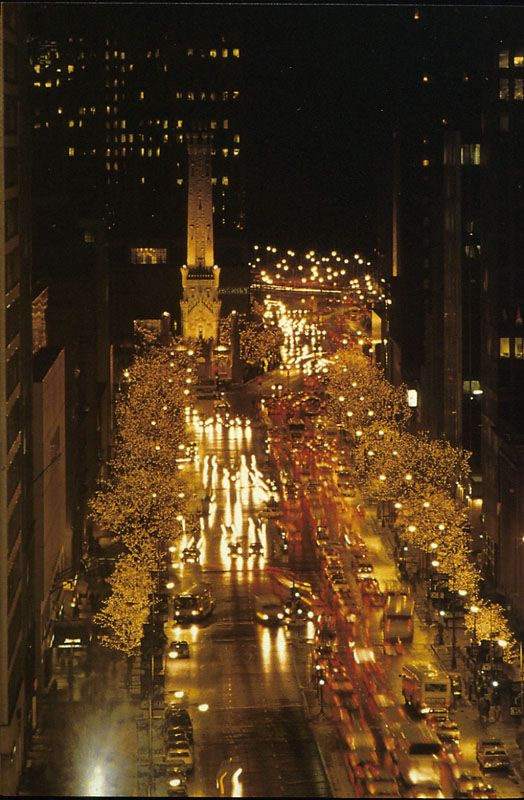 Christmas In Chicago Skyline.The Magnificent Mile Favorite Places Spaces Chicago