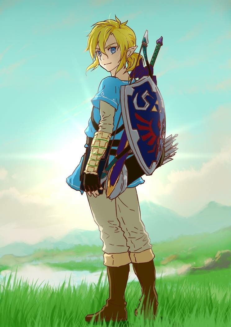 Pin By Amy On The Legend Of Zelda Legend Of Zelda Legend Of Zelda Breath Zelda Art