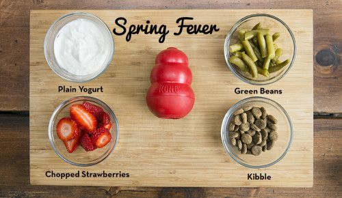 26 Healthy Treats You Can Stuff In Your Dogs KONG Toy Kong toys