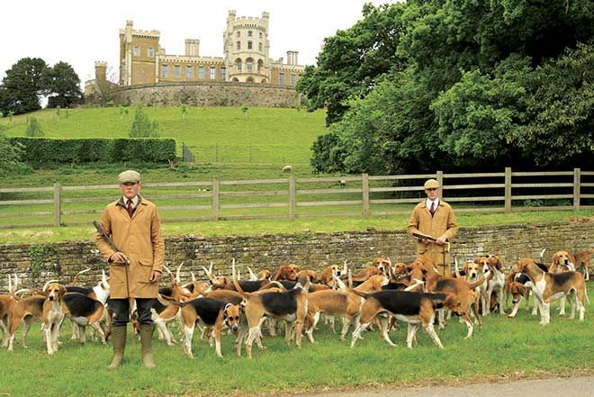 Hunting Equestrian Belvoir Castle With Images Outdoor Dog