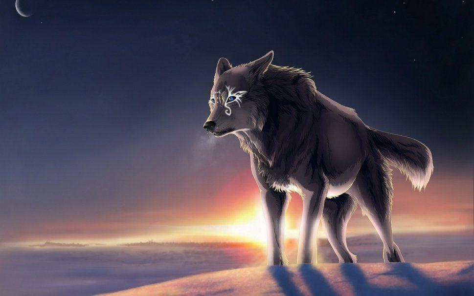 Lone Wolf Wallpaper Wallpapersafari Wolf Wallpaper Fantasy Wolf Animal Wallpaper