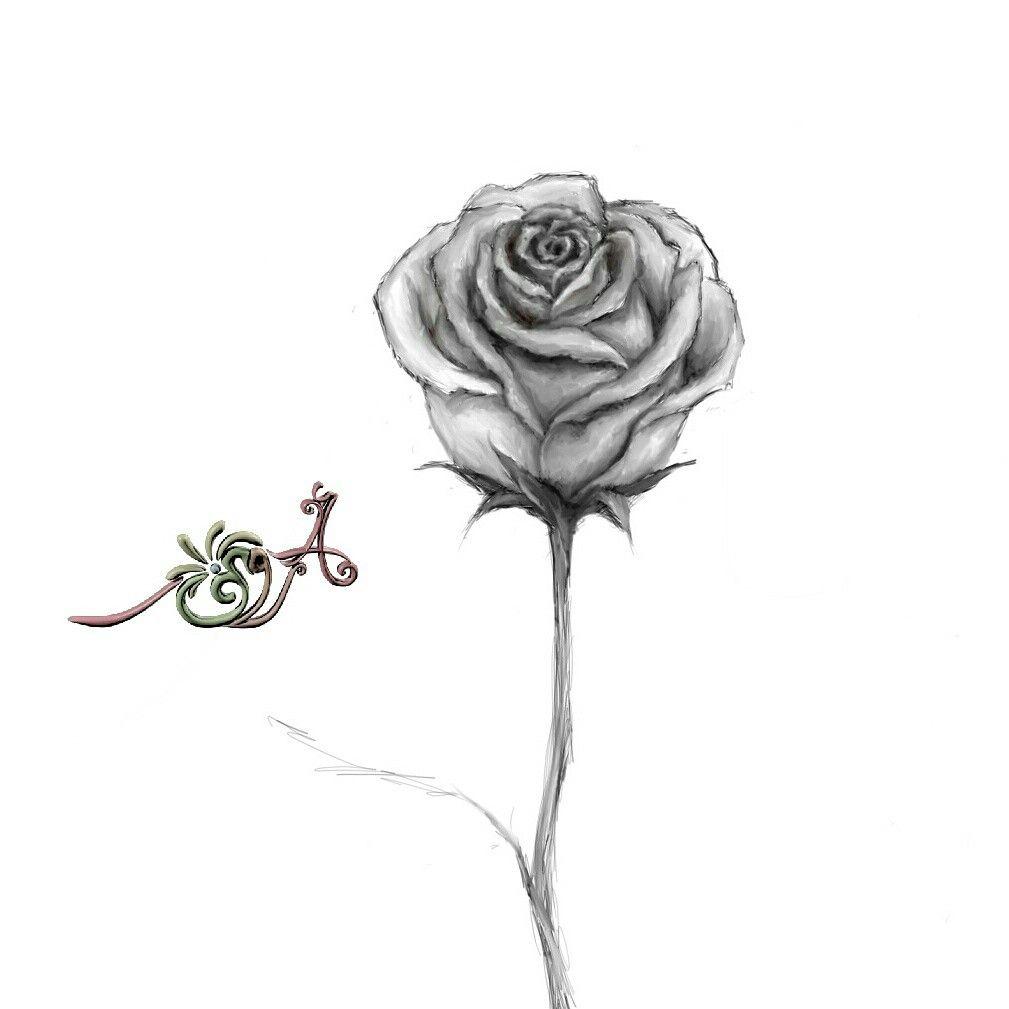 وردة أسود وأبيض رسم رقمي بقلم Microsoft Surface Tatuajes Discretos Tatuajes