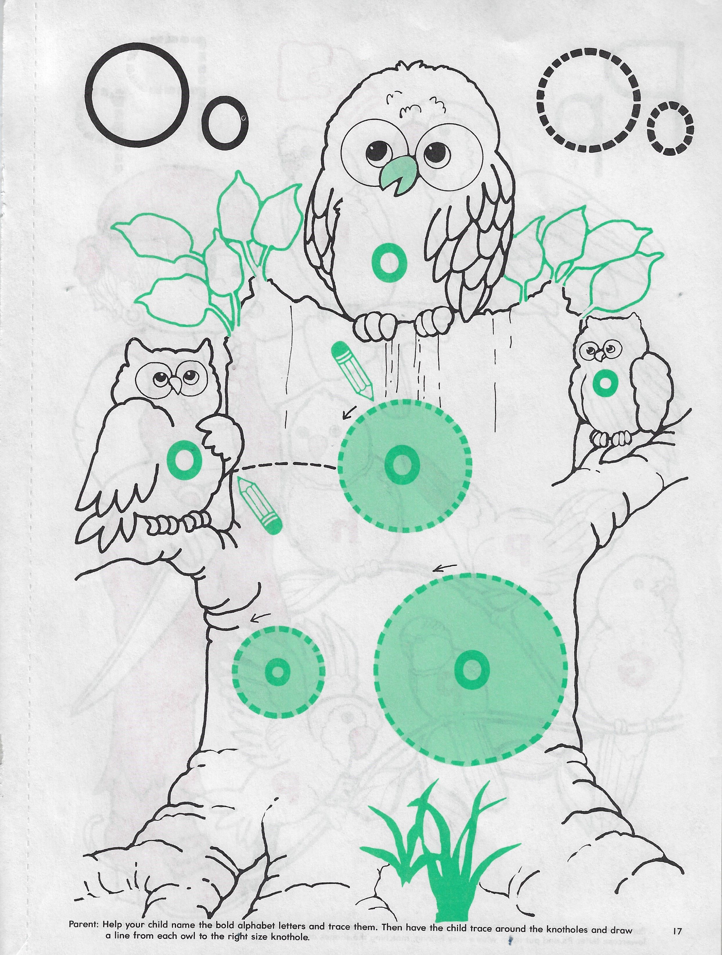 Pin By Guylaine Labbe On Owl Preschool Thme