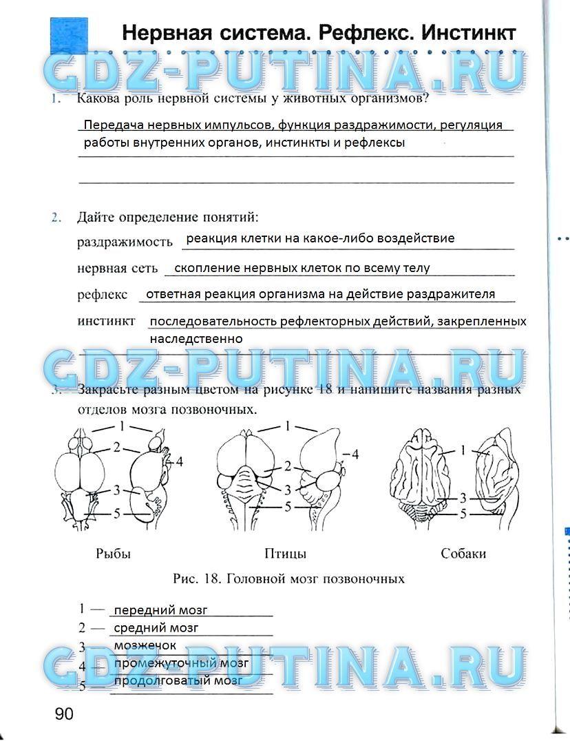 Голицынский грамматика решебник 6 издание издательство каро.