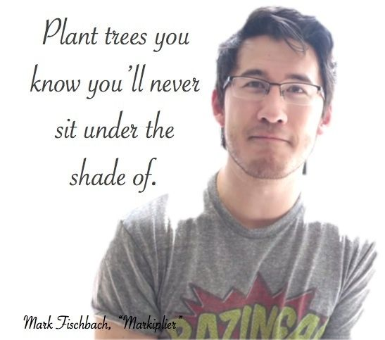 Markiplier Quotes Inspirational Markiplier Quote  Markiplier Photo 37803662 .