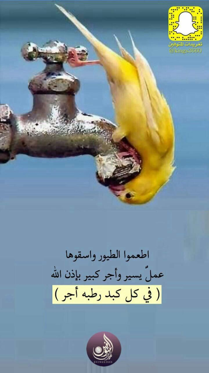 Pin By الحمد لله تكفى On صور دعويه للنشر والتوزيع Qoutes Words Movie Posters