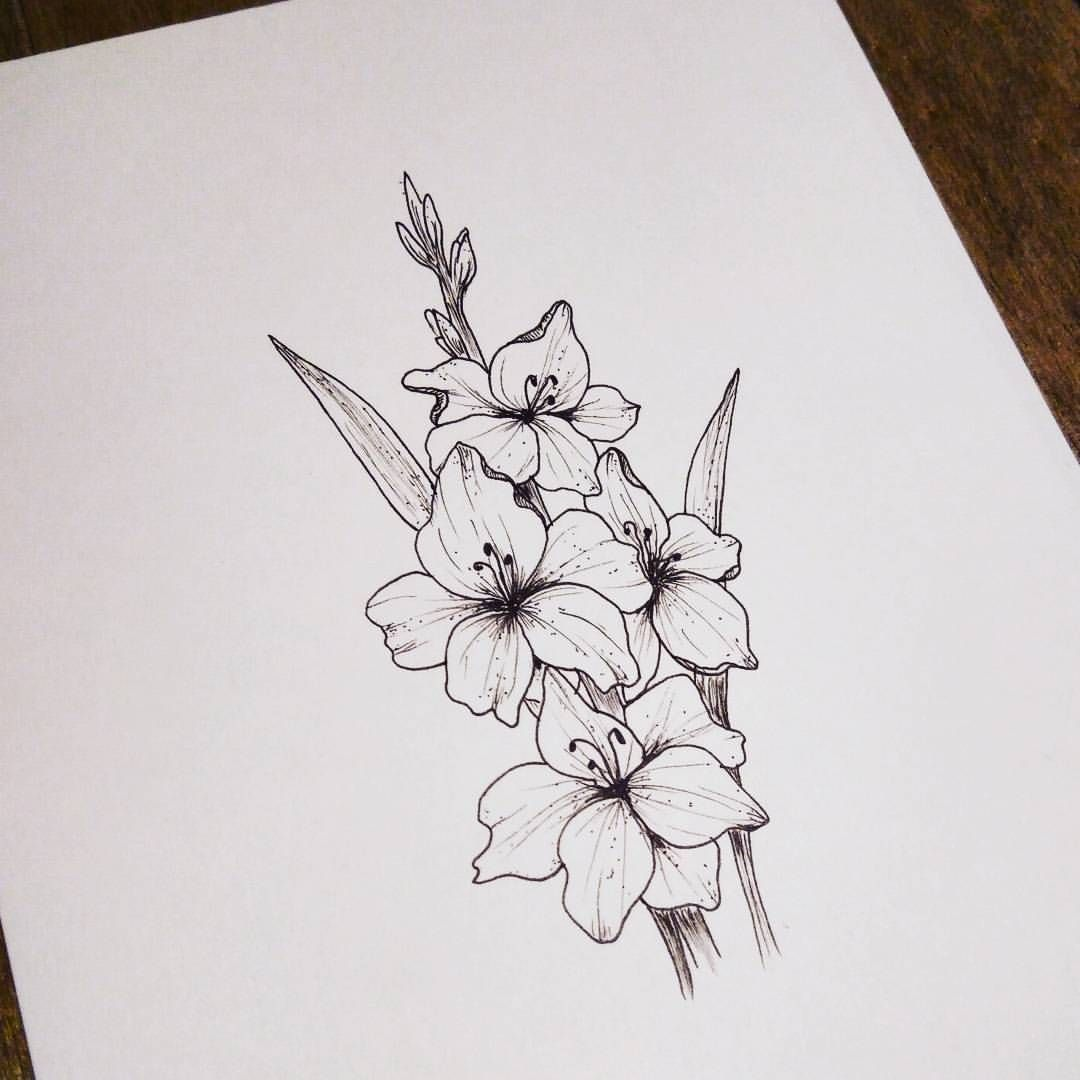 Gladiolus For Botanicalchallenge Botanicallinedrawing With Botanicallinedrawing Drawn With Gladiolus Tattoo Birth Flower Tattoos Gladiolus Flower Tattoos