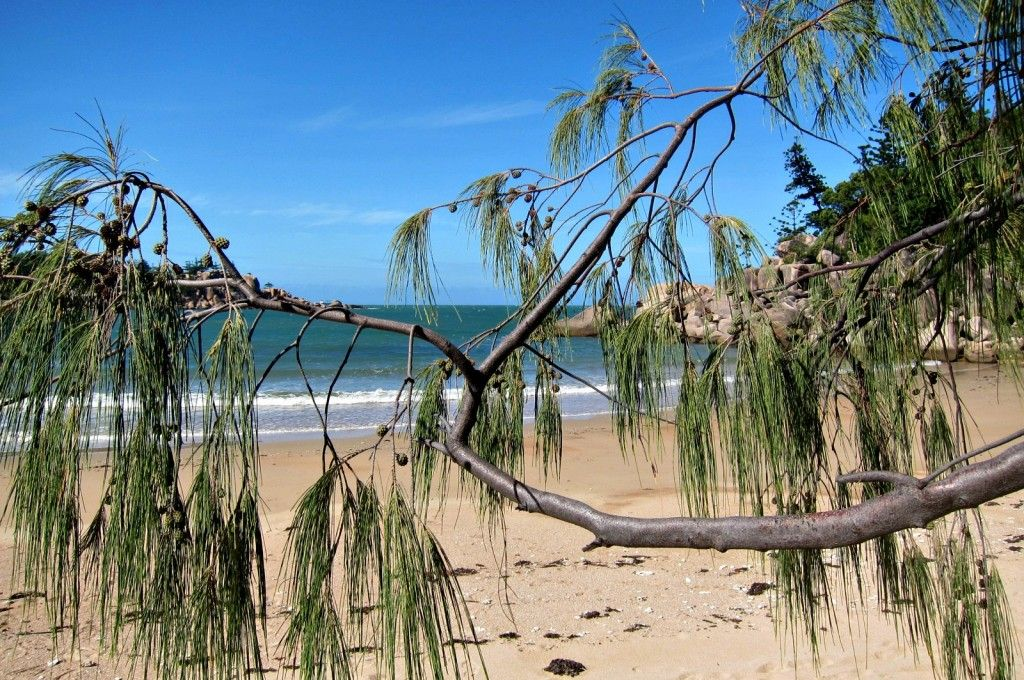 Florence Bay on Magnetic Island has a fringing reef to snorkel over, big boulders to climb and is lined with She Oak Trees.