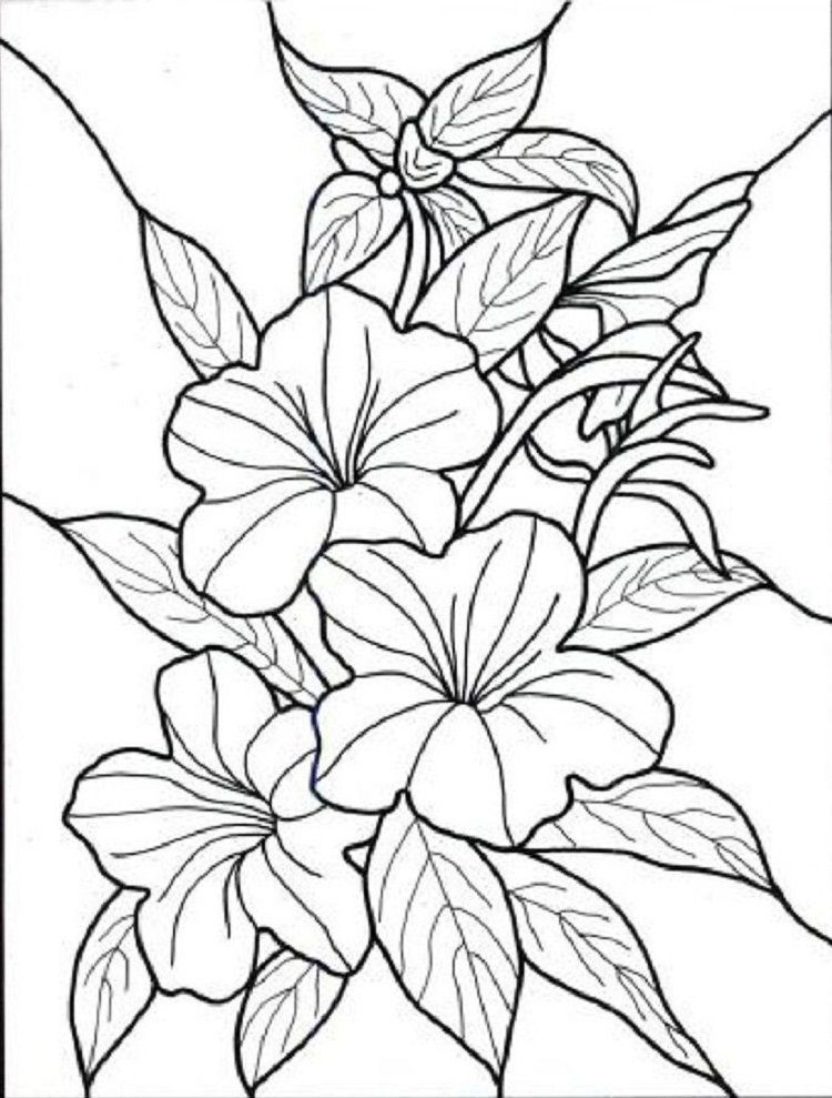Flower Coloring Pages For Girl Printable Flower Coloring Pages Flower Coloring Sheets Flower Coloring Pages