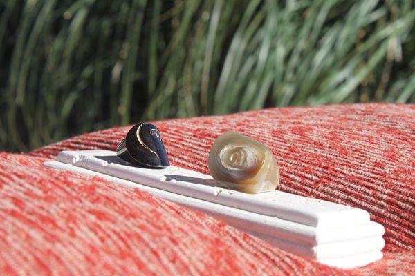 Ring Set >> Cow horn rings Check out -> http://goo.gl/rqBU8m