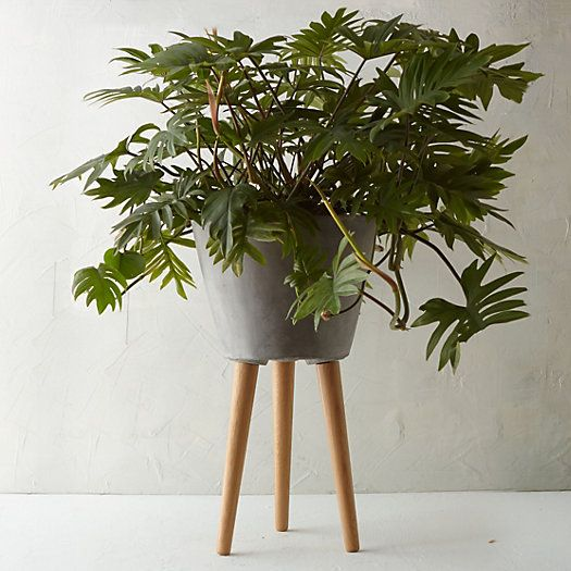 Indoor Planter with Stand | Garden Planters | interior ...