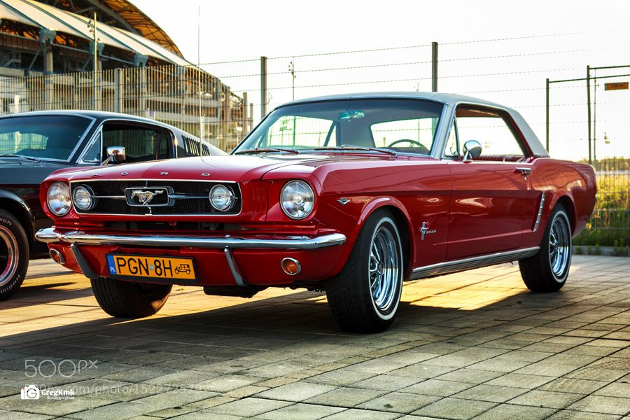Stang '66 by GregKmk