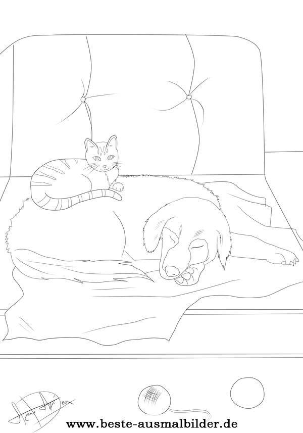 Ausmalbild Hund und Katze | Desenhos para Piro. | Pinterest ...