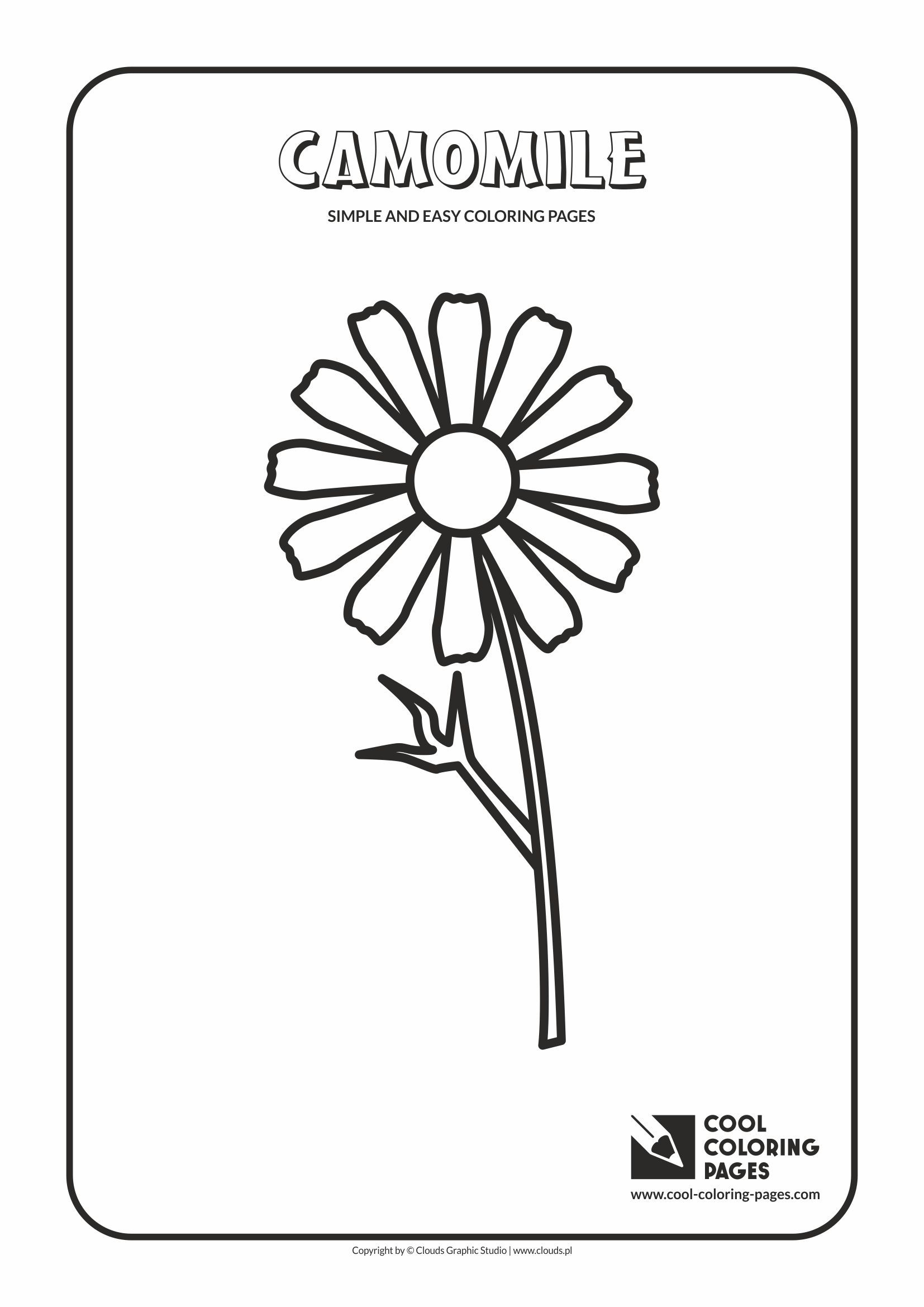 Easy coloring pages for toddlers - Simple And Easy Coloring Pages For Toddlers Camomile
