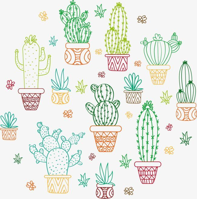 Vector Painted Cactus Vector Hand Painted Color Png And Vector With Transparent Background For Free Download Bullet Journal Cactus Cactus Outline Outline Drawings Outline Illustration