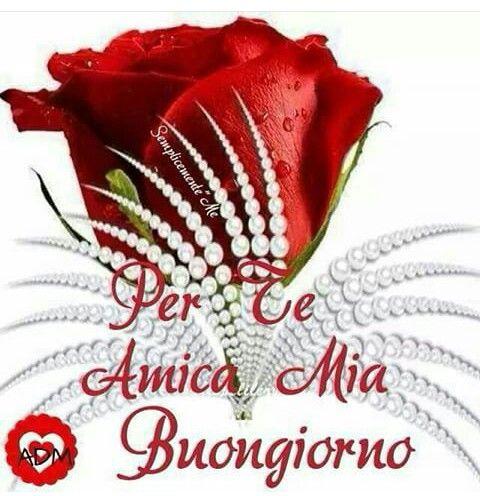 Buongiorno Amica Mia Buon Giorno Good Morning Buongiorno și Night