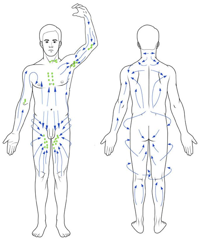 Lymphatic Drainage Flowchart Lymphatic Drainage Massage